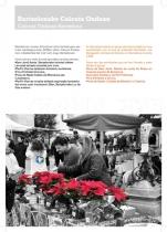 calcuta_ondoan_memoria_page_17