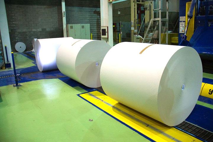 Papresa_rollos-de-papel-cortados