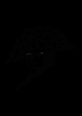Karagrama de Napoleón Bonaparte + Baskerville Old Face - Vanesa Varas