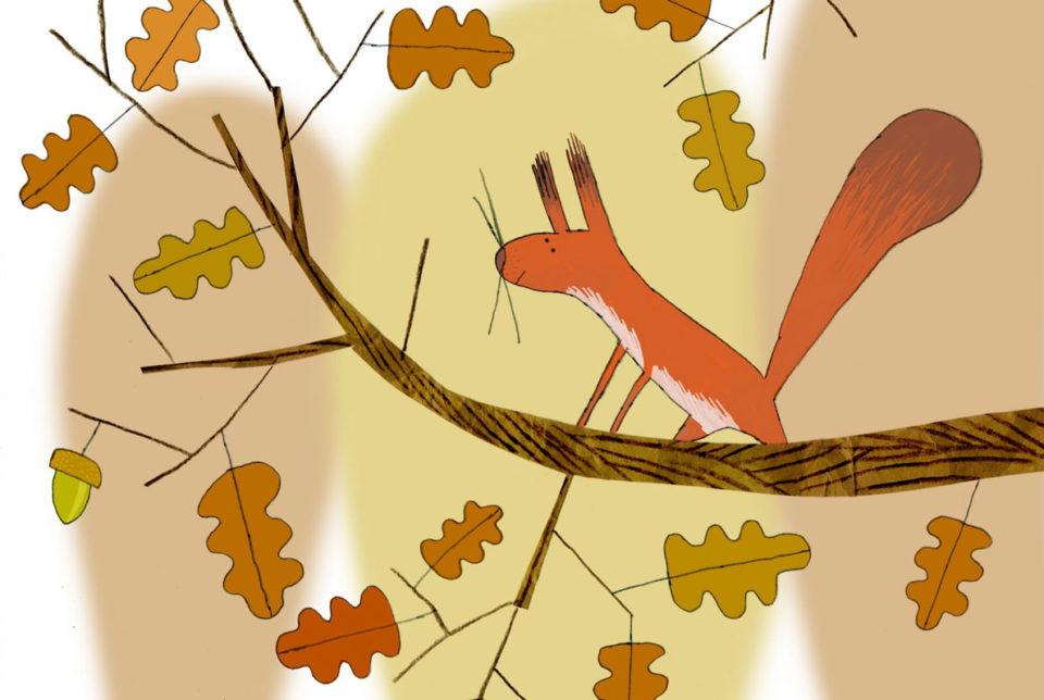 Alexander Fernandez Ilustrador: Aran ilustración color ardilla