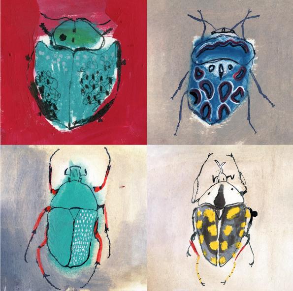 Sandra Garayoa ilustradora escarabajos