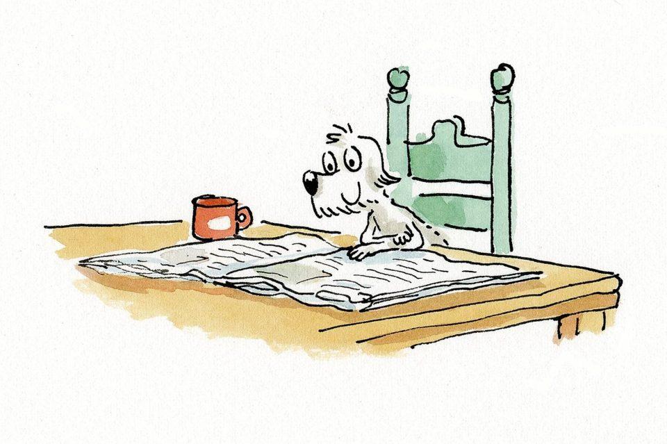 Mikel Vaverde ilustración Shola leyendo