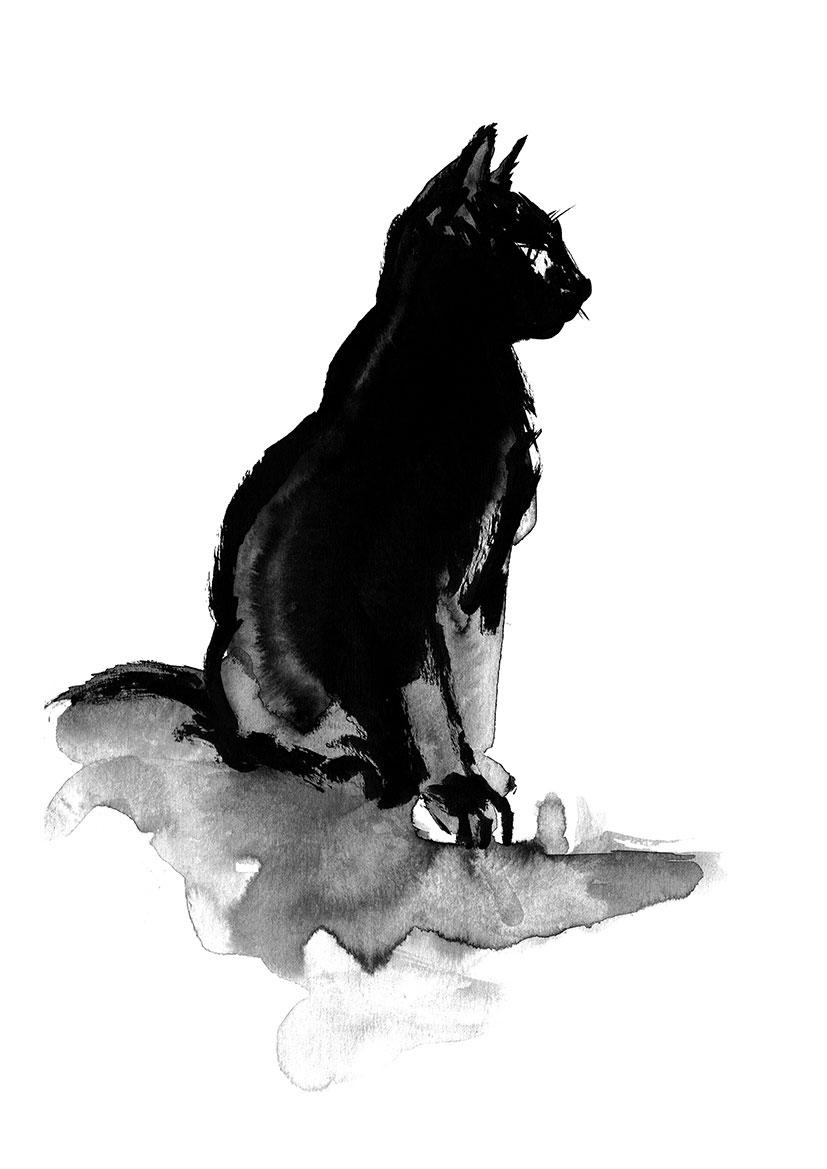 Alberto Muriel Ilustrador: Dibujo de Gato Negro Gris